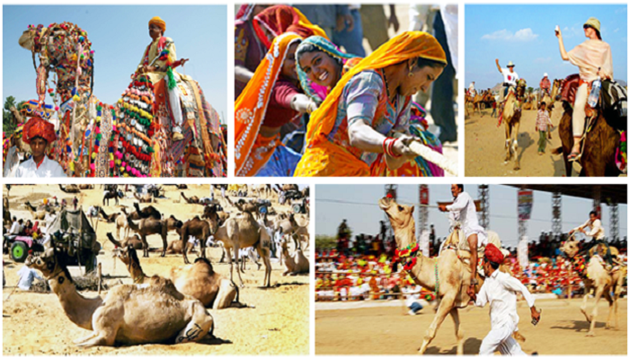 pushkar-fair-globetrouper